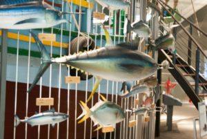 蘭陽博物館魚兒游