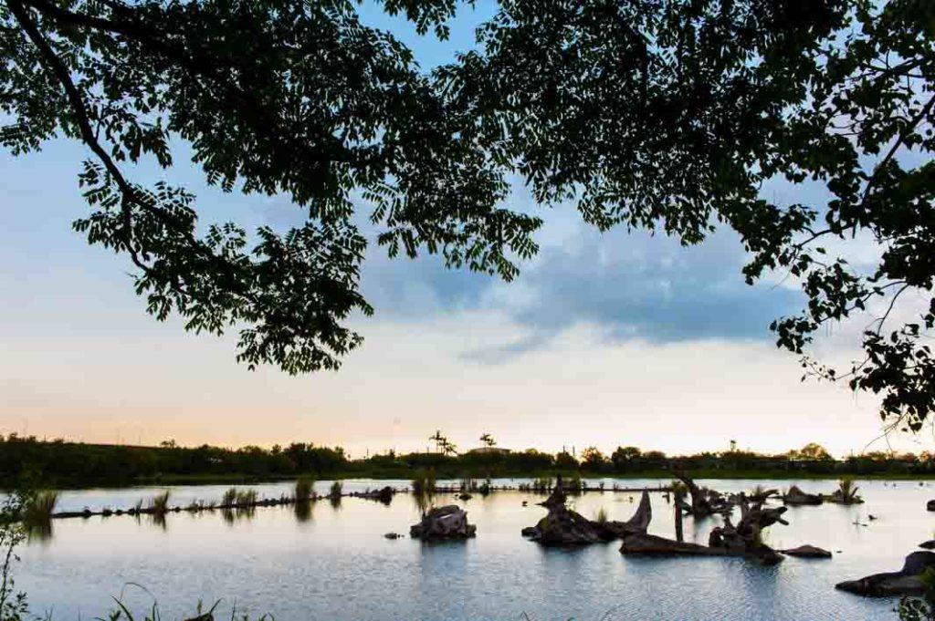 梅花湖清晨之景