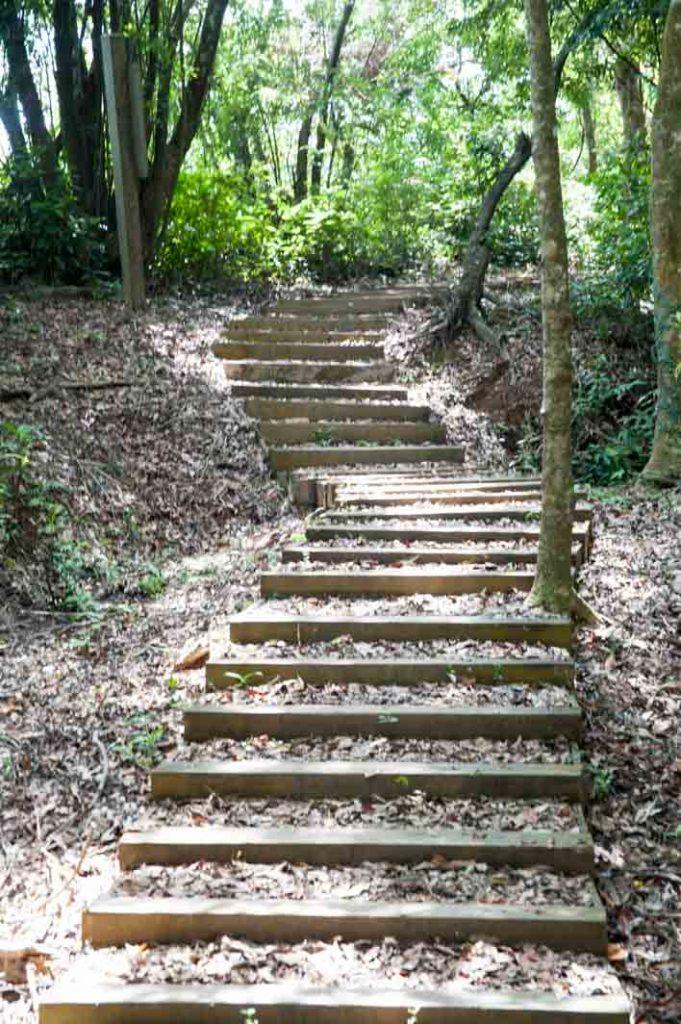 梅花湖山徑步道階梯