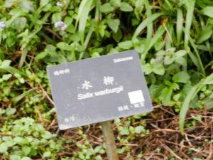 福山植物園藥用植物