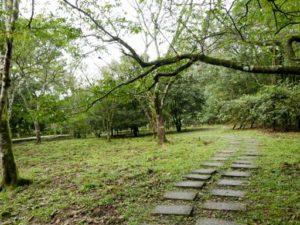 福山植物園步道