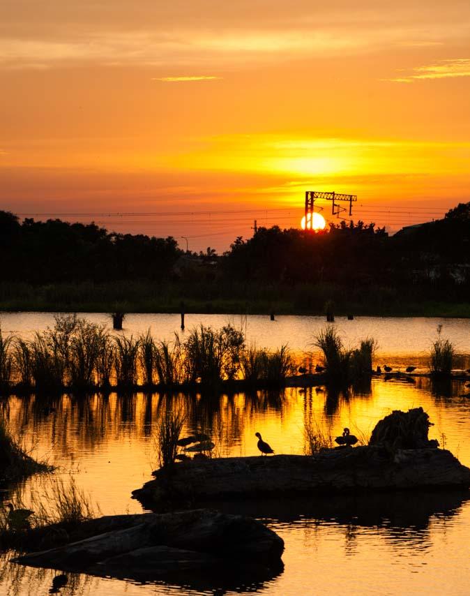 梅花湖美景