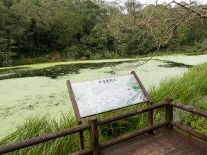 福山植物園照片