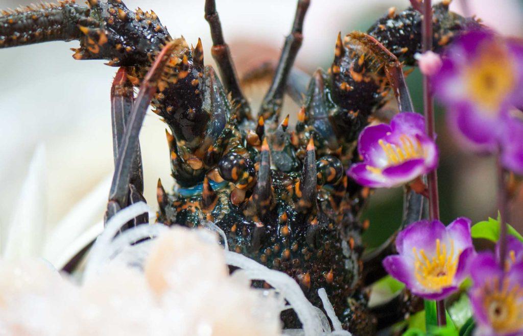 龍蝦生魚片-南方澳海鮮